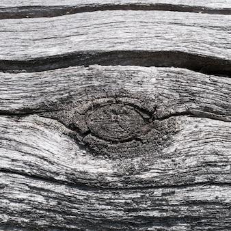 Consistenza della superficie in legno stagionato. vecchio registro.