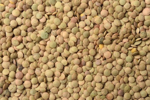 Texture di lenticchie salamanca su sfondo bianco