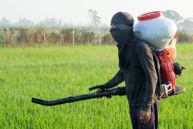 Agricoltore tailandese con attrezzature per erbicidi o fertilizzanti chimici su campi di coltivazione del riso verde