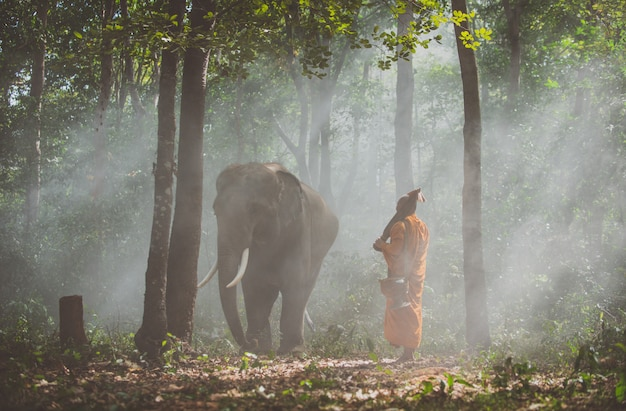 Monaci tailandesi che camminano nella giungla con gli elefanti