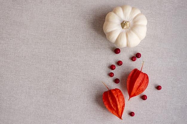 La stagione del ringraziamento ancora in vita con zucca piccola colorata, bacche rosse e fiori di physalis