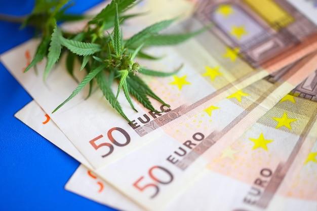 Cannabis medicinale terapeutica - fiore di marijuana e droga hashish con soldi di fatture in euro