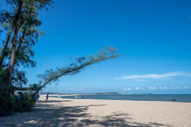 C'erano il cielo azzurro e la spiaggia di sabbia, e un pezzo di spiaggia di sabbia gialla insensibile che cresceva diagonalmente?