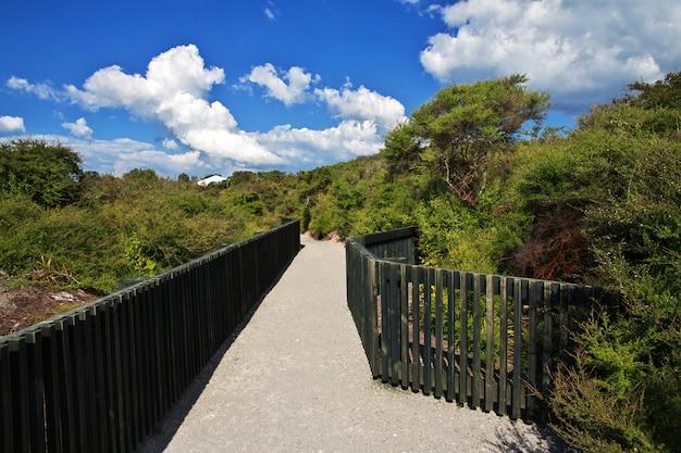 Parco termale a rotorua, nuova zelanda