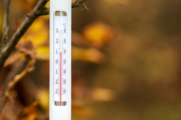 Il termometro sulle foglie autunnali mostra una temperatura di più 11 gradi