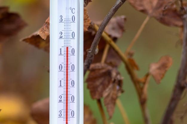 Il termometro sullo sfondo delle foglie secche autunnali mostra 15 gradi di calore_