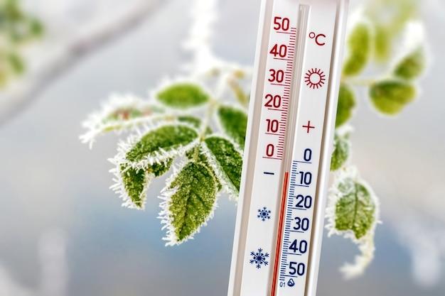 Un termometro su uno sfondo di foglie ricoperte di brina mostra 5 gradi sotto zero