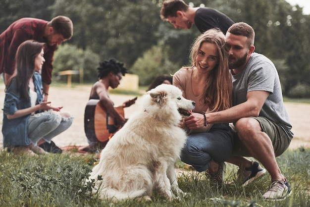 Amano il loro animale domestico. un gruppo di persone fa un picnic sulla spiaggia. gli amici si divertono durante il fine settimana.