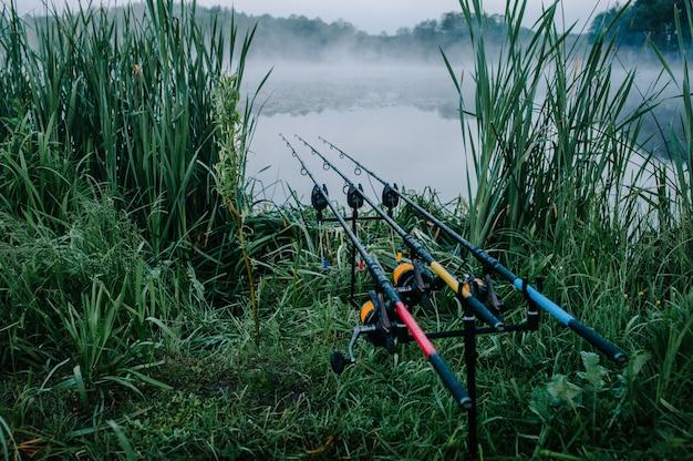 Tre canne da pesca della carpa nel baccello di asta su una superficie del lago