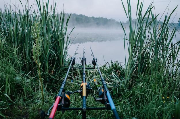 Tre canne da pesca nel baccello su una superficie del lago