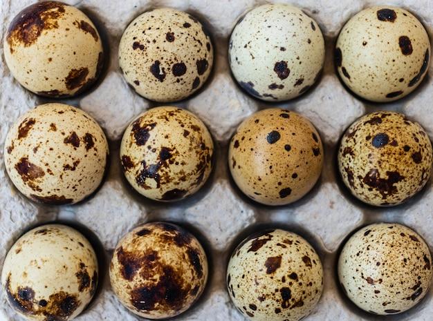 Tre uova di quaglia pasqua. vista dall'alto. tre uova di quaglia fresche su sfondo nero.?????. ??????????? ????. composizione pasquale. sfondo di pasqua