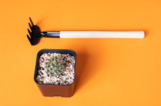 Tre fioriere replica sono state fotografate su uno sfondo arancione. con un cactus vuoto accanto