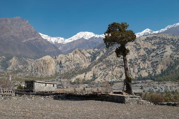 Villaggio tibetano in montagna himalayana con cielo blu.