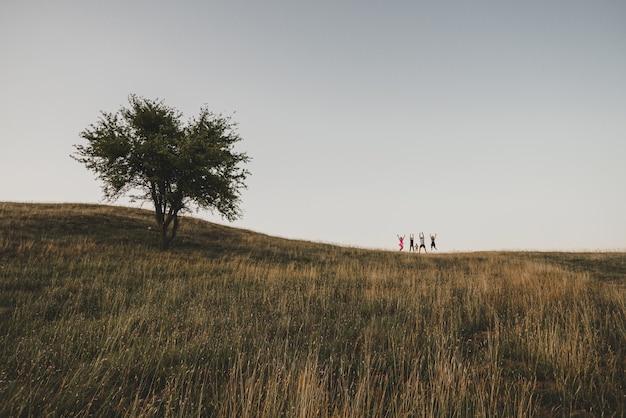 Piccole persone che saltano nella natura
