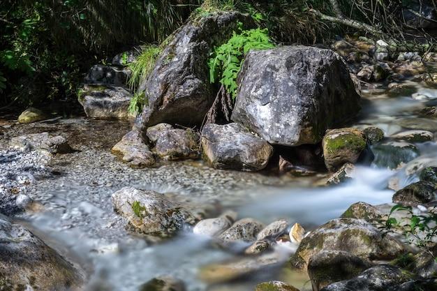 Piccole rapide al torrente val vertova lombardia vicino a bergamo in italia