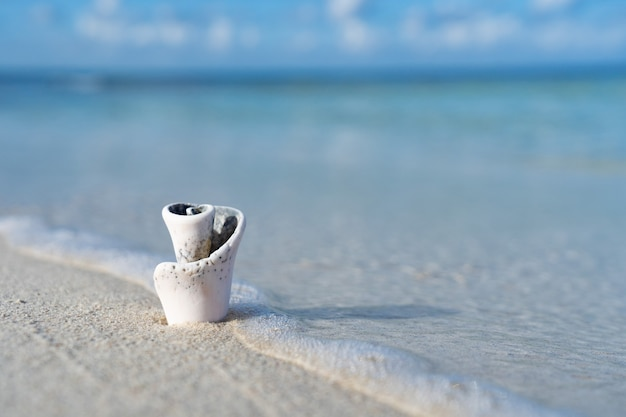Piccola conchiglia sulla spiaggia di sabbia bianca e mare cristallino. concetto di vacanza e viaggio. foto di alta qualità