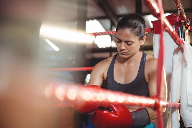 Boxer femmina stanco seduto sul ring