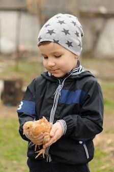 Ragazzo del bambino con un piccolo pollo in mano alla fattoria