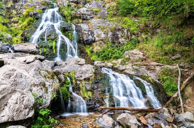 Cascata todtnau nelle montagne della foresta nera, germania