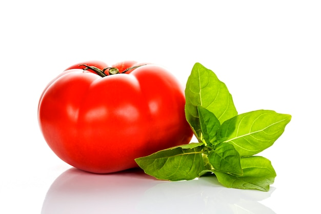 Pomodoro e basilico su sfondo bianco