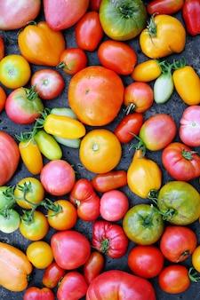 Pomodori varie forme, vista dall'alto