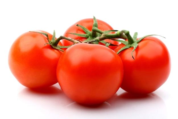 Pomodori isolati sulla fine bianca di superficie in su