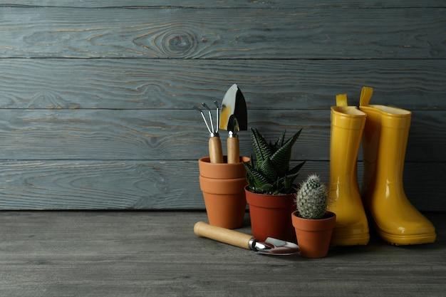 Strumenti per il giardinaggio su sfondo grigio in legno