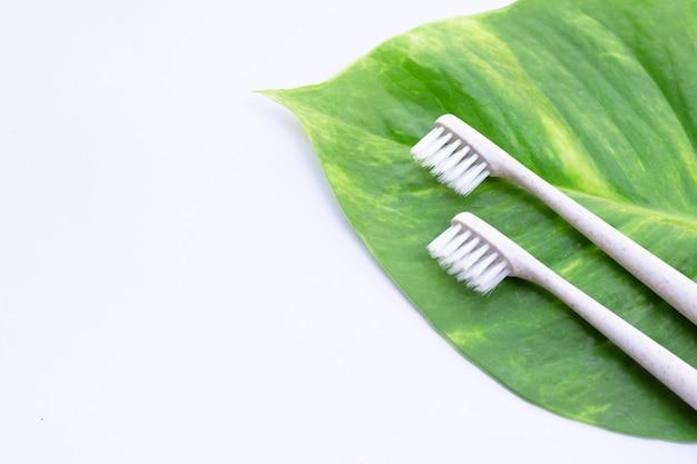 Spazzolini da denti con foglia verde