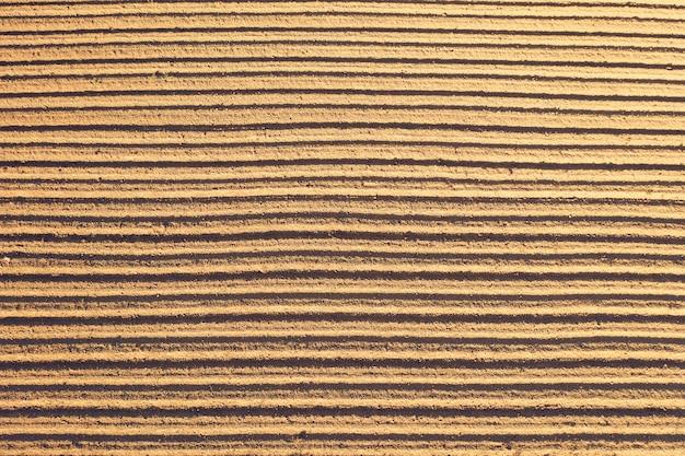 Vista aerea dall'alto di solchi lisci piante agricole appena piantate sullo sfondo della trama del suolo