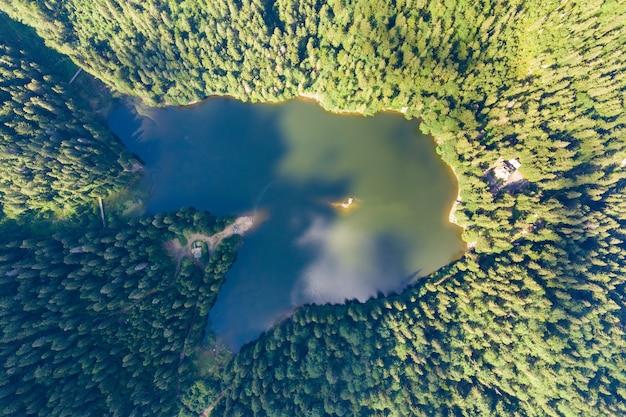 Vista aerea dall'alto verso il basso del grande lago con acqua cristallina tra colline di alta montagna ricoperte da una fitta foresta sempreverde.