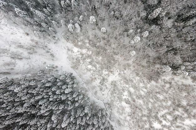 Vista aerea dall'alto verso il basso della foresta di pini sempreverdi innevata dopo abbondanti nevicate nei boschi di montagna invernali in una fredda giornata tranquilla.