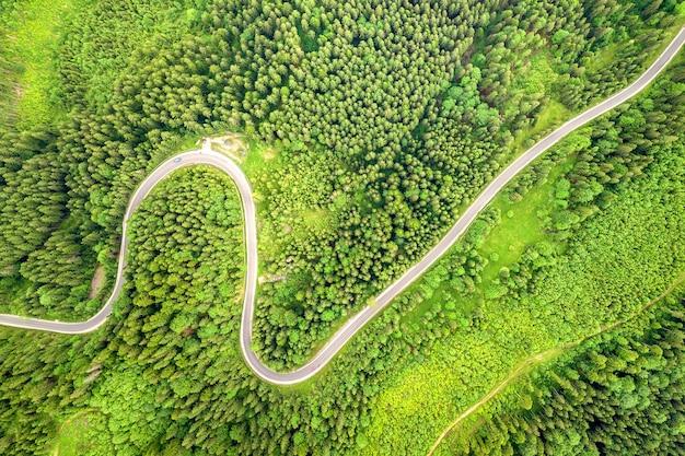 Vista aerea dall'alto verso il basso della tortuosa strada forestale in boschi di abete rosso di montagna verde.
