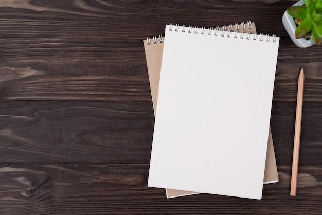 Vista dall'alto in alto, foto piatta di un telefono notebook vuoto e succulenta posizionata sul lato destro isolato su sfondo di legno con copyspace
