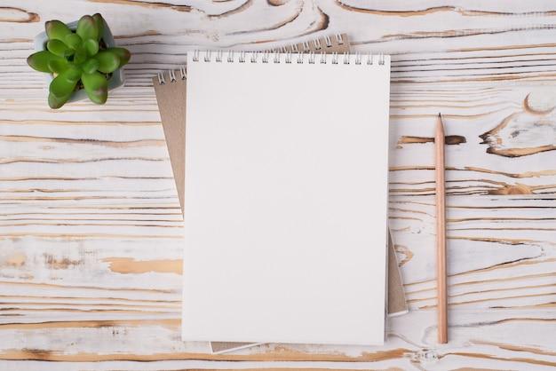 In alto sopra la vista dall'alto foto piatta di un quaderno bianco succulento e matita di legno accanto isolato su sfondo di legno chiaro con copyspace