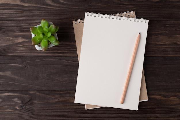 Vista dall'alto in alto, foto piatta di un taccuino vuoto, matita di legno e succulenta isolato su sfondo di legno con copyspace