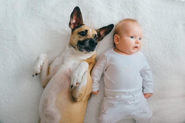 Top ritratto di adorabile piccolo bambino sdraiato sul letto con cucciolo divertente