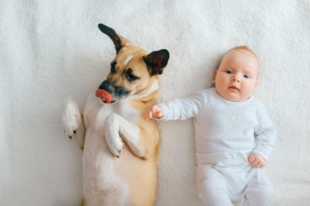Ritratto superiore del neonato che si trova con il cucciolo divertente sul letto.