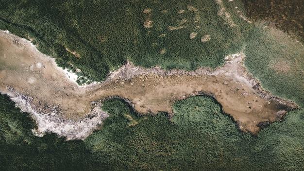 Drone foto aerea vista dall'alto di un incredibile paesaggio naturale di bellezza con sabbia verde tropicale con