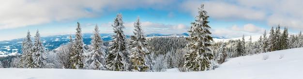 Vista dall'alto di una bellissima vista ipnotizzante della pista da sci con piste da sci situate in montagna in una gelida sera d'inverno soleggiato.