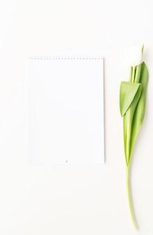 Vista dall'alto del calendario vuoto per mock up design e tulipano bianco. concetto di primavera.