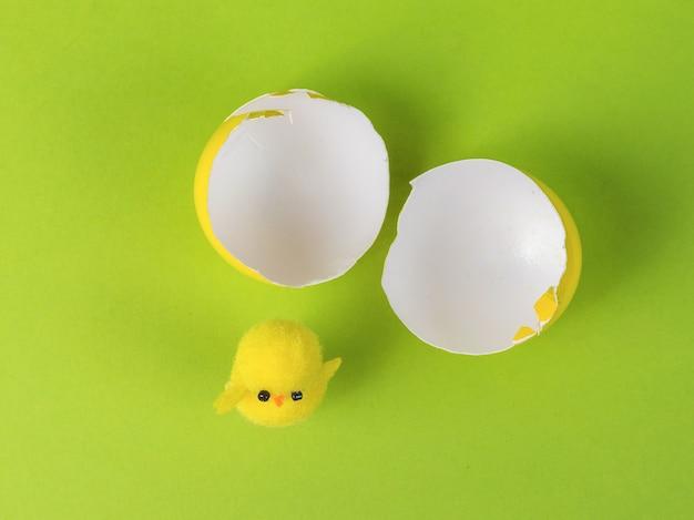 Vista dall'alto di un uovo rotto e un pollo su uno sfondo verde.