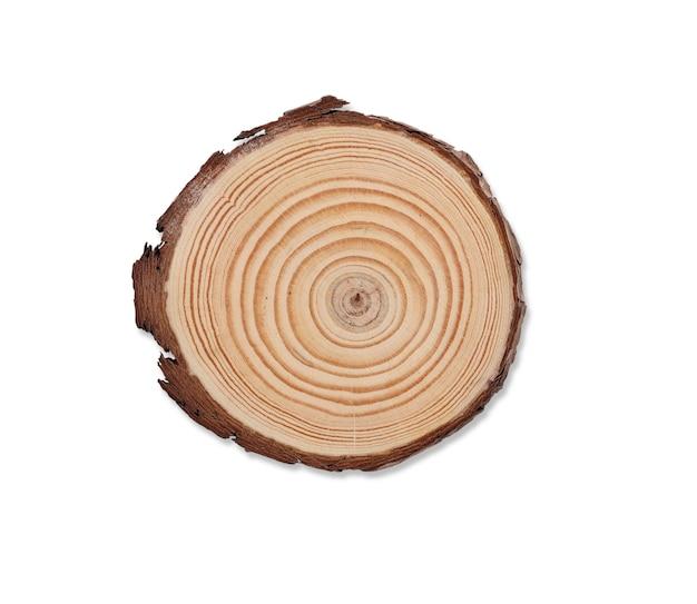 Vista dall'alto sottobicchiere in legno chiuso con struttura ad albero isolata e sfondo bianco con tracciato di ritaglio