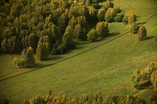 Una vista dall'alto di alberi forestali colorati e lago nella stagione autunnale.