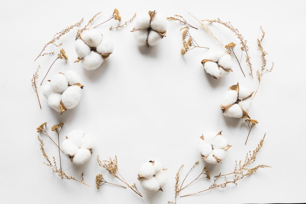 Vista dall'alto di fiori di cotone