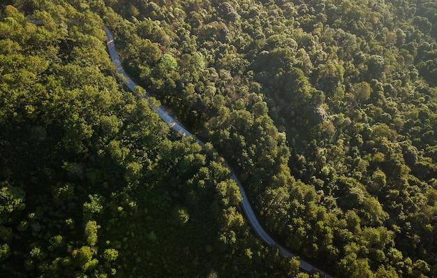 Vista dall'alto della strada di campagna che passa attraverso la foresta verde e la montagna