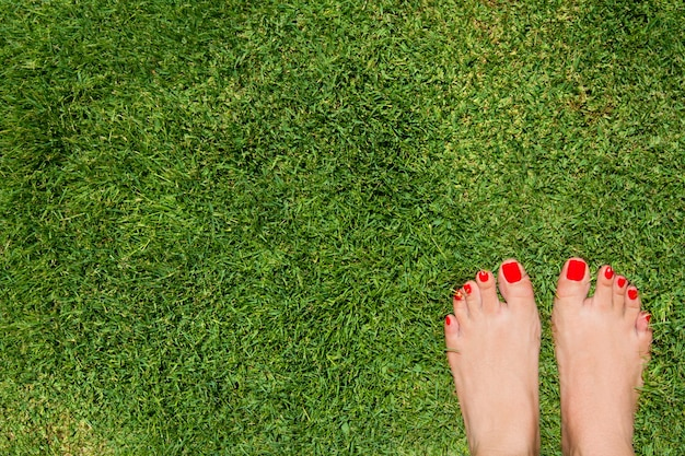 Vista dall'alto dei piedi femminili sull'erba con le dita rosse