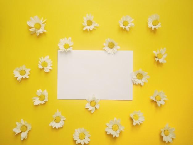 Vista dall'alto laici piatte di dolce diasy con notepad vuoto per lo spazio del testo su sfondo giallo.