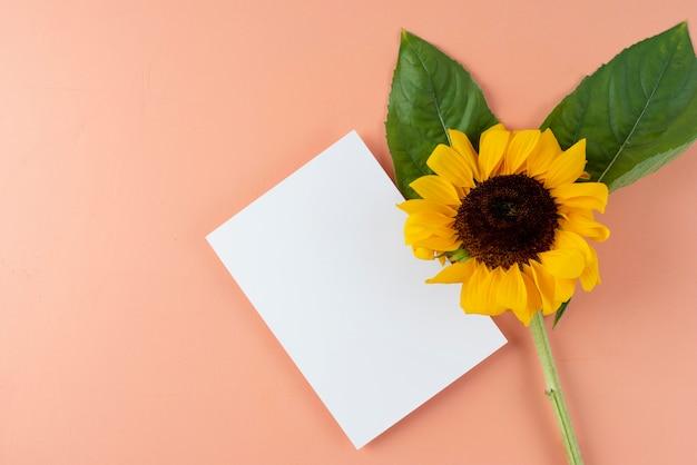 Vista dall'alto del fiore con carta bianca
