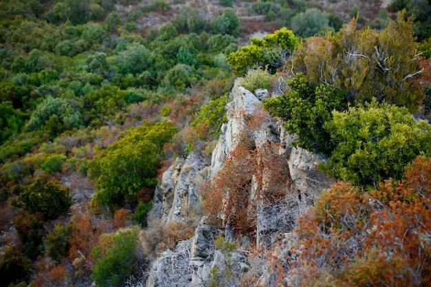 Vista dall'alto di grandi scogliere del terreno montuoso e dell'isola costiera della corsica, francia.