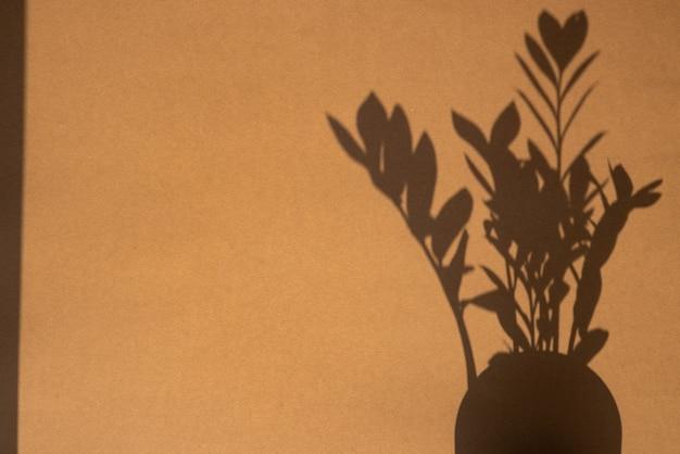 Vista dall'alto dell'ombra della pianta verde su sfondo di colore marrone sabbia. disposizione piatta. vista dall'alto del concetto estivo minimo